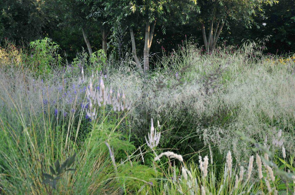 PLANTWERK - JULI 2019