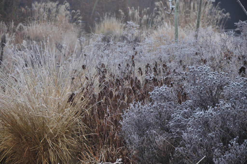 PLANTWERK - wintertuinen